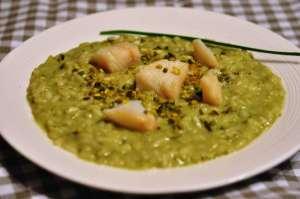 Carnaroli autentico con clorofilla di erba cipollina, granella di pistacchi e baccalà scottato